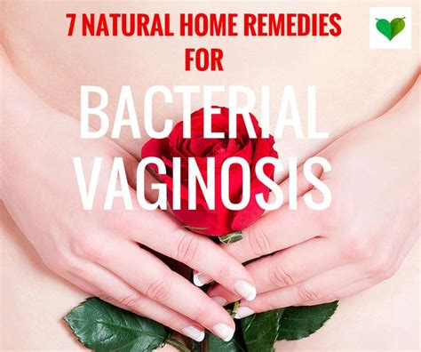 herbal treatment for vaginal baterial infections jpg 736x616